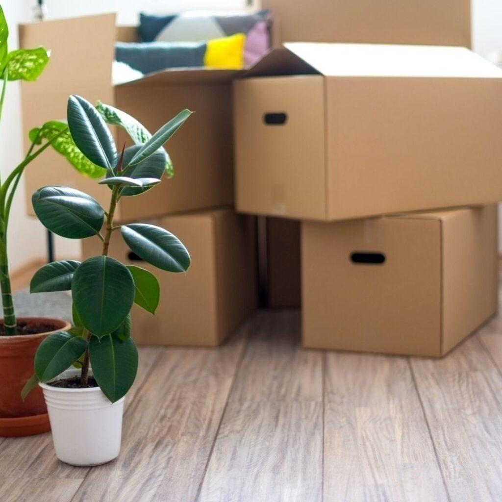 flytta från lägenhet