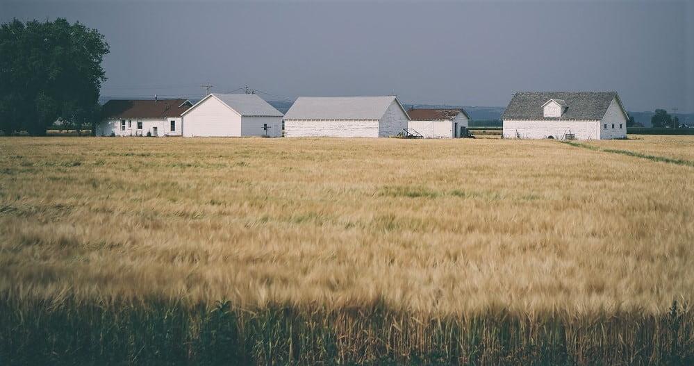 Flera hus ute på landsbyggnaden. De är byggda med källargrund och platta på mark.