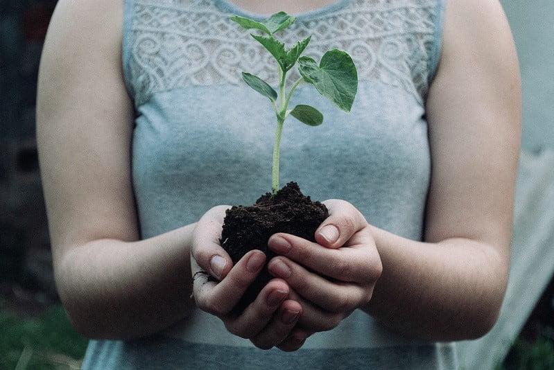 Kvinna håller planta.