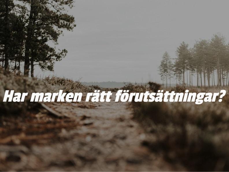 Bild på skogsmark med texten: Har marken rätt förutsättningar?