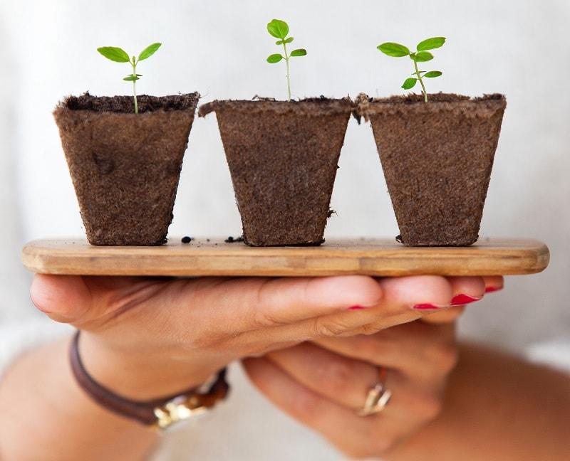 Du kan med fördel odla på altanen.