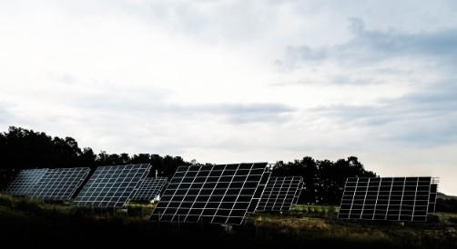 solceller på ett fält med träd i bakgrunden
