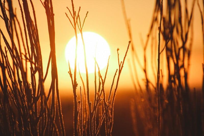 Solen lyster på kvällen, på väg neråt på himlen.