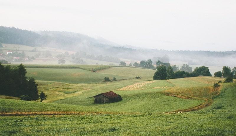 Böljande gröna kullar